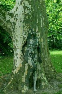 6c8ec4c0d9537f39e2a68cfd07e4b1d1--johannes-stötter-painting-trees.jpg