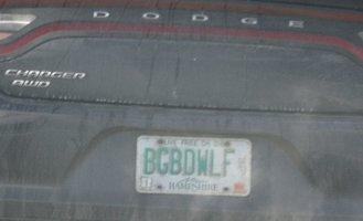 BGBDWLF.jpg