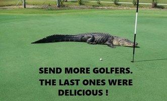 Gator 3-13 GOLFERS.jpg