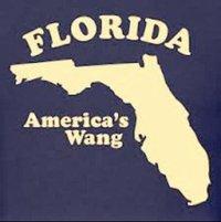 Florida - America's wang.jpg