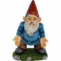 norm gnome.jpg