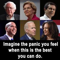 panicdemocratecandidates.png