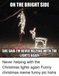 xmas deer lights.png
