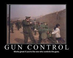 guncontrolworksgreat.jpg