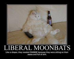 cat-moonbats.jpg