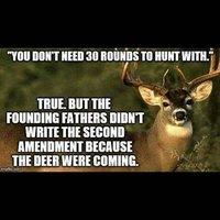 Deer Image.jpg