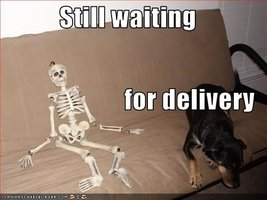 still-waiting-for-delivery.jpeg