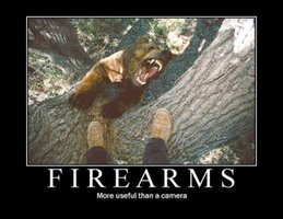 Firearms more useful than a camera.jpg