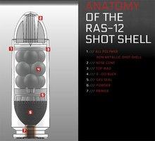 RAS-12one.jpg